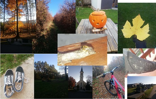 k Merth 2AHIHH Herbst Collage
